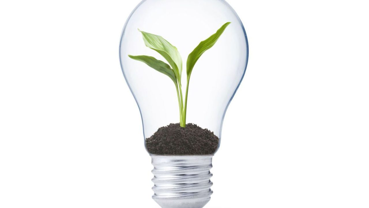 Lampadina A Incandescenza Storia messa al bando delle lampadine alogene è necessario uno