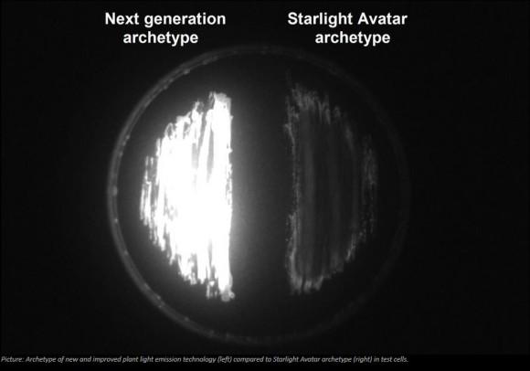 evoluzioni bioglow tech