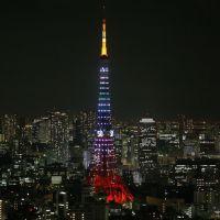 Tokyo Tower Diamond Veil